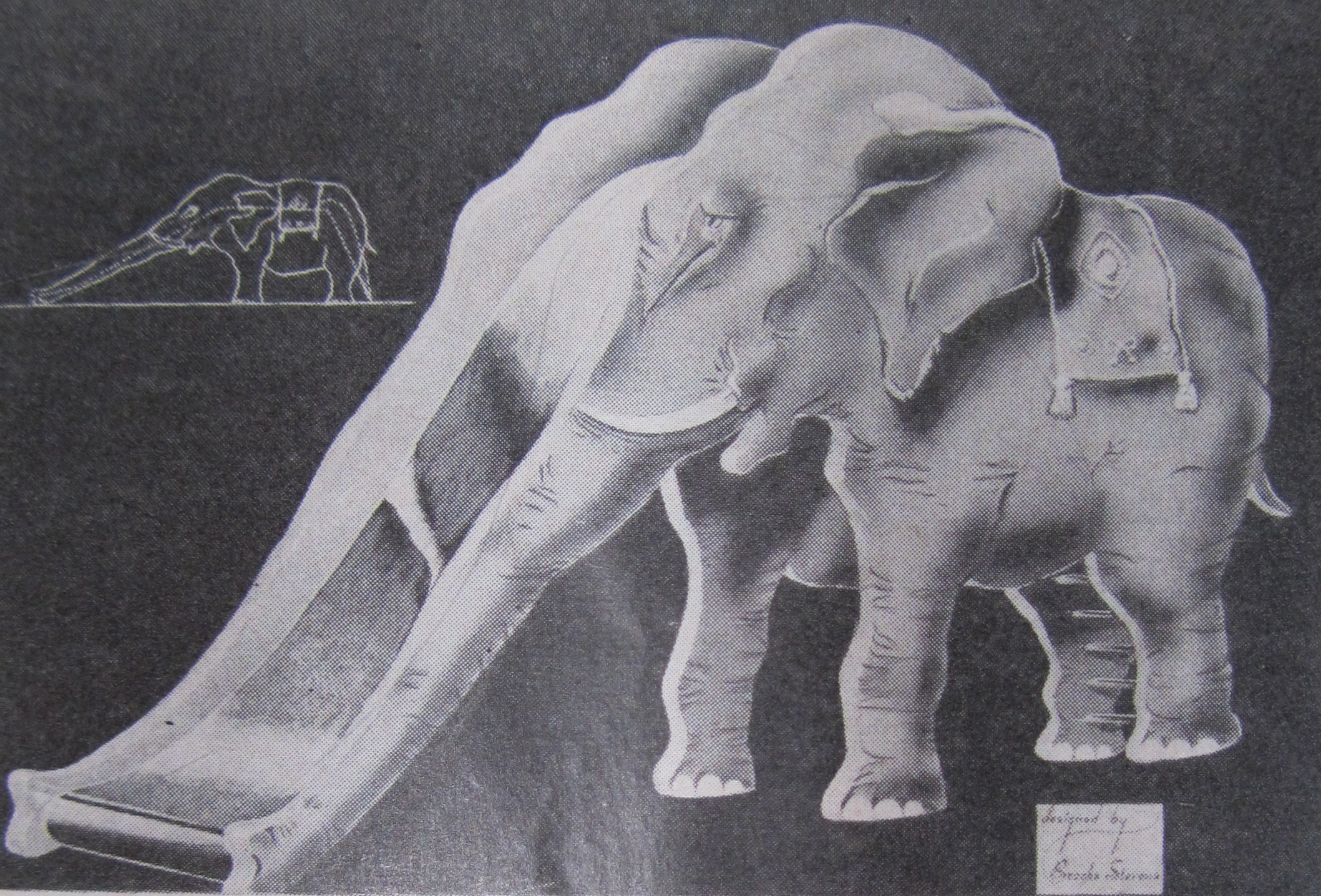 elephant from MJS 1938