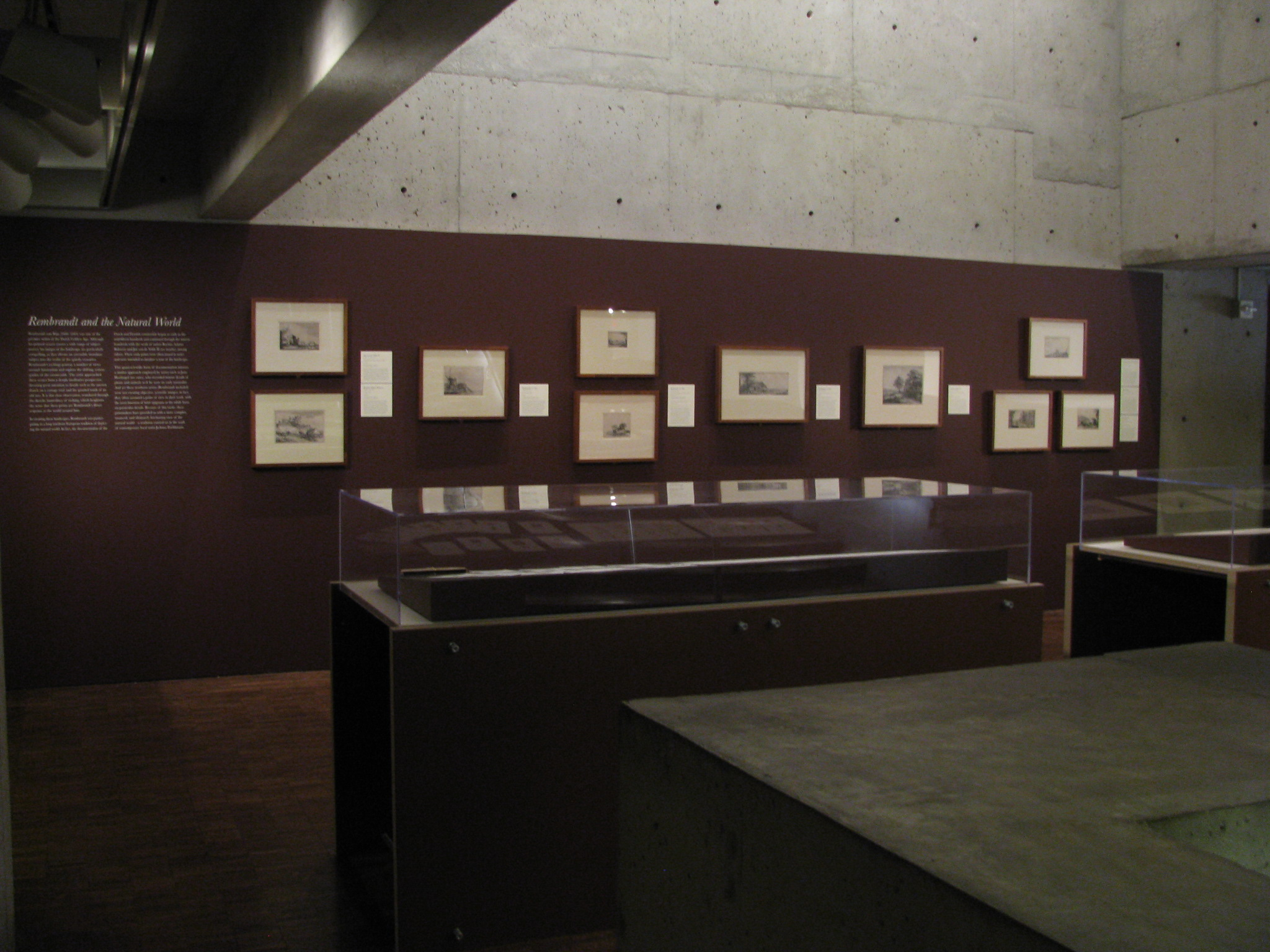 """Installation views of the """"Rembrandt and the Natural World"""" Mezzanine rotation. Photo by the author"""