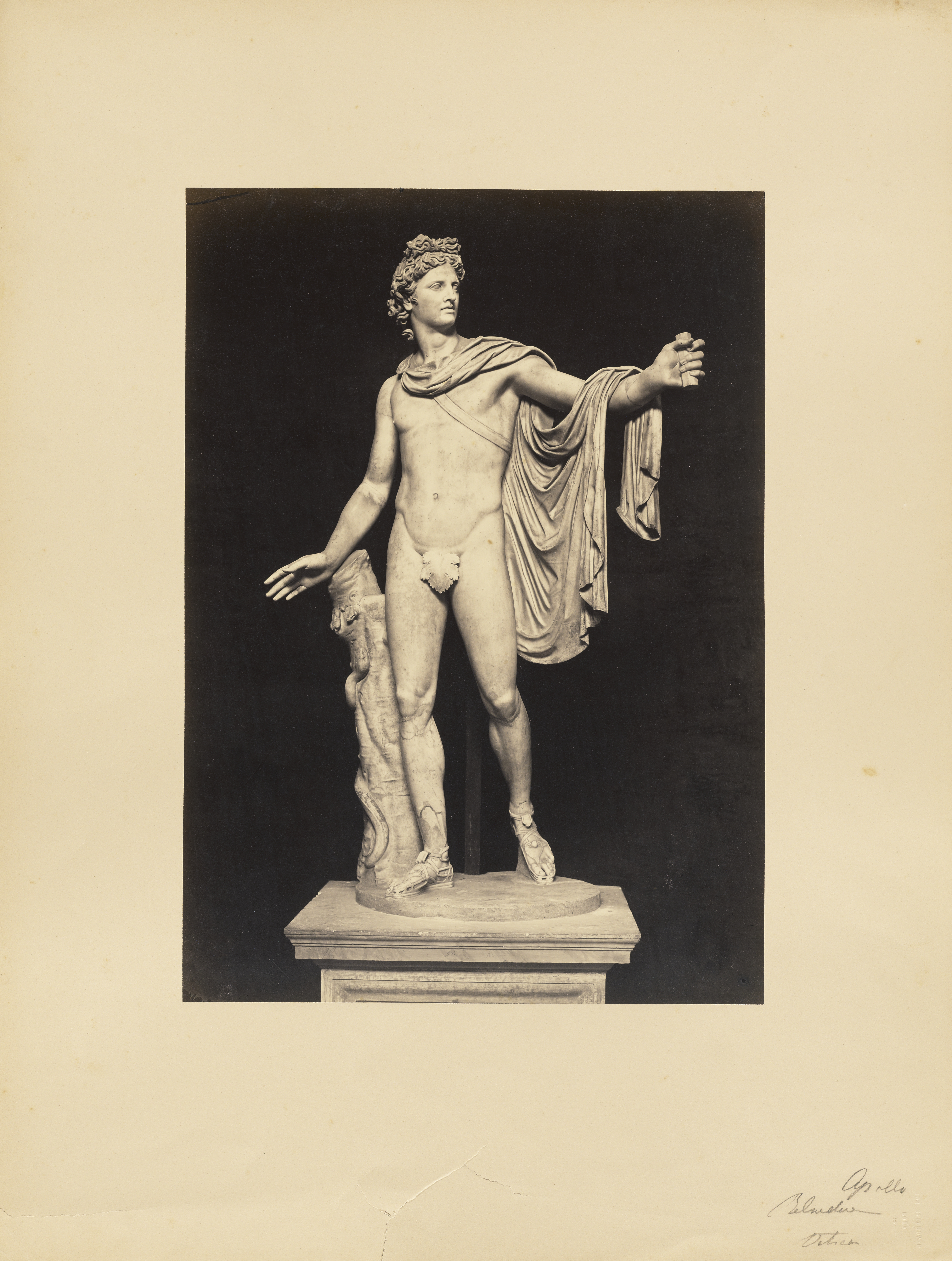 Albumen silver print of the Apollo Belvedere, a Roman marble copy from ca. mid-2nd century AD of a Greek bronze from 330–320 BC. Photograph ca. 1854–55 taken by James Anderson (British, 1813–1877). Digital image courtesy of the Getty's Open Content Program.