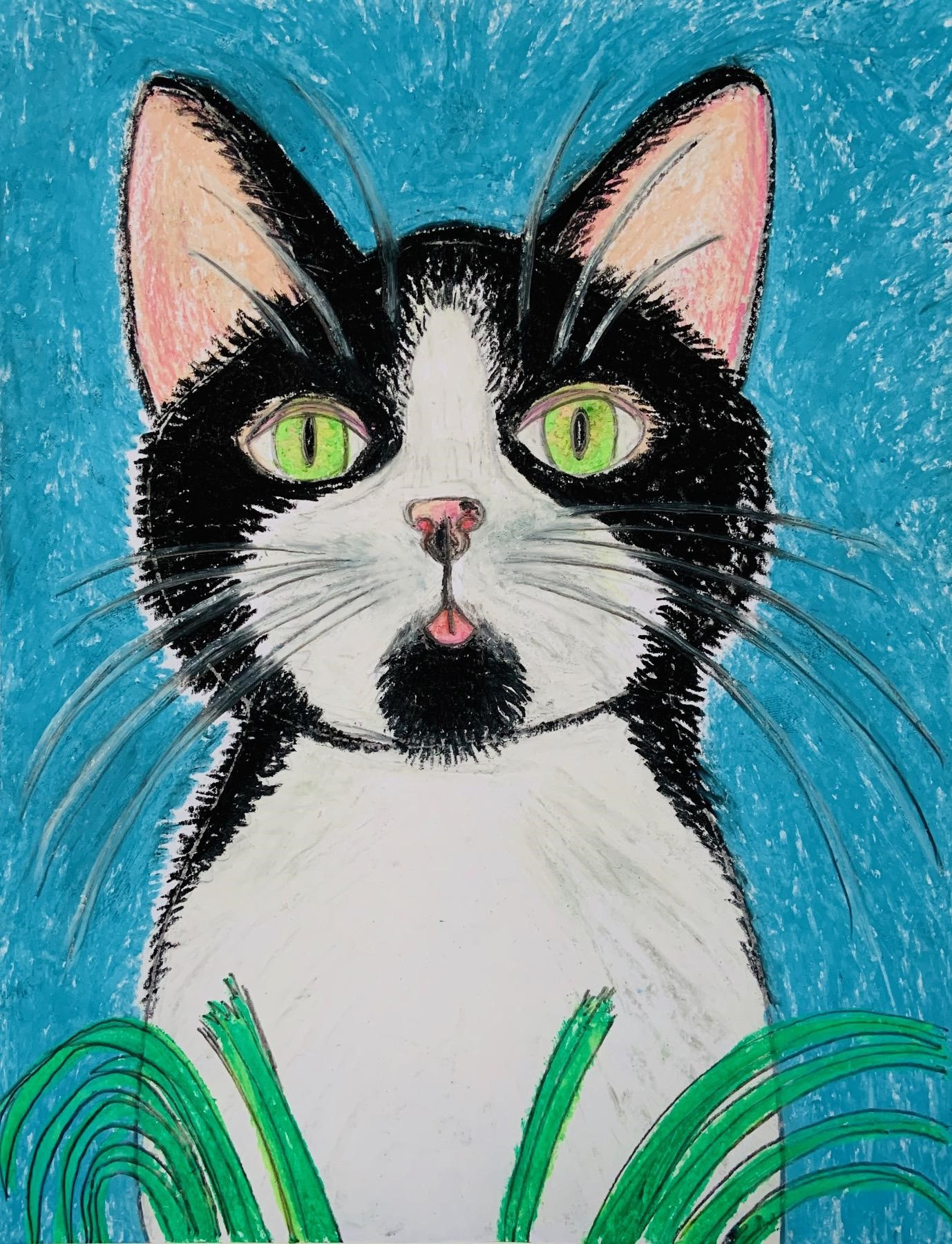 Black and white cat with green eyes sitting in grass
